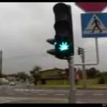 Zielone światło dla legalizacji