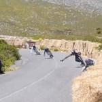 Wypadek na longboardzie - BOLESNY!