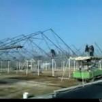 Polacy rozbierają starą szklarnię