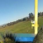 Wiewiórka UKRADŁA samolot!