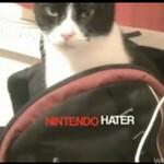Kot, który nienawidzi Nintendo