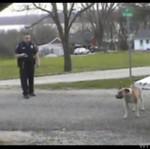 Policjant ZASTRZELIŁ psa na smyczy! (18+)