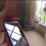 Pies husky śpiewa z iPadem