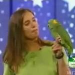 Papuga, która potrafi śpiewać