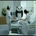 Serek Panda - fanstastyczne reklamy!