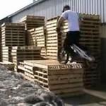 Kozak na BMX-ie