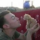 Żołnierze z Afganistanu uratowali małe kotki!