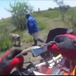 Motocyklista ratuje cielaczka!