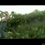 Skok na kaktusy - CYMBAŁ CZY MASOCHISTA?