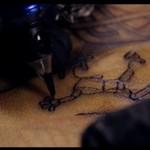 Tatuaż jako dzieło sztuki - niesamowite!