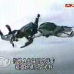 Nieudany skydiving