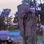 Ściął drzewo - stracił samochód!