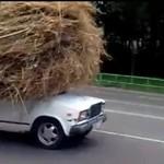 Ten kierowca nie widzi problemu