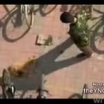 Bestialski rosyjski żołnierz zabił psa cegłą!