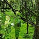 Akrylowe rzeźby w lesie