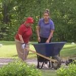 Zła staruszka zakopuje męża w parku