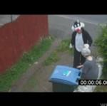 Pamiętacie kobietę, która wrzuciła kociaka do śmietnika?
