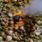 Płonący obiekt spadł z nieba!