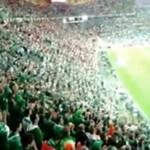 Irlandczycy - KRÓLOWIE KIBICOWANIA!