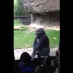 Goryl sprowadza dzieciaki do parteru