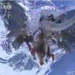 Ptak łapie rybę (w zwolnionym tempie)