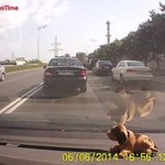 Wypadki samochodowe - MOCNA SKŁADANKA!
