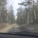Droga Wojewódzka numer 133