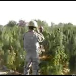 Amerykańscy żołnierze na polu GANDZI!