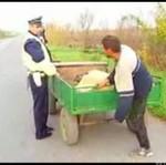 Kontrola drogowa w ROSJI - HA, HA, HA!