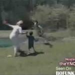 Ataki wściekłego ptactwa