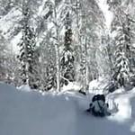 Amatorski tor bobslejowy - zjechałbyś?
