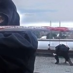 Miejski ninja - walczy z systemem