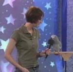 Niesamowita papuga