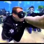 Dał buziaka rekinowi... OSTATNIEGO!