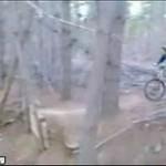 Wypadek na BMX-ie... Nietypowy!
