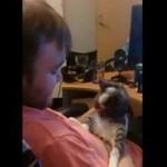 Ten kotek nie lubi być całowany...