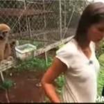 Małpa zrobiła dziewczynie psikusa!