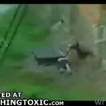 Pijana baba na drabinie (wideo z Rosji)