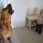Dzieciak i pies grają buesa