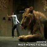 Lwica rzuciła się na artystkę!