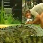 Dziecko i krokodyl?