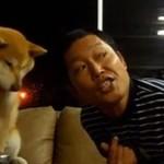 Ten pies nie lubi całowania!
