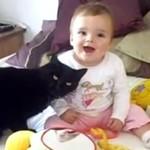 Koty KOCHAJĄ dzieci!