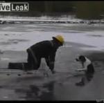 Strażacy uratowali psa!