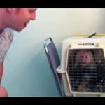 Małpka uwielbia beatbox!