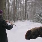 Zaklinaczka niedźwiedzi - WOW!