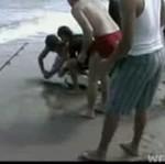Rekin pogryzł człowieka