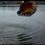 Łowienie ryb, level: Rosja