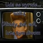 Kolejne gwiazdy śpiewają po polsku!