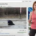 YouTube News Polska (18.07) - półgolf, samica jelenia, sztuczna Rumunka, rodzinna sielanka